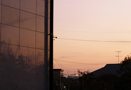 061219w_silhouette