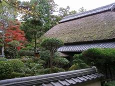 091113uenokouen21_nizyayasiki1