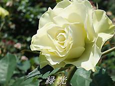 120519kana_garden85_name