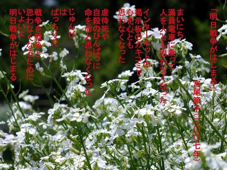 140529daikon_poem