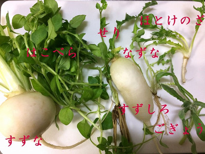 170107_nanakusagayu2_mozi