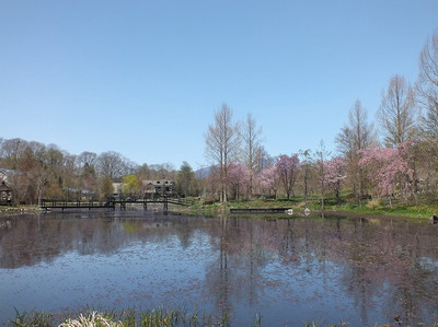 170502karuizawa_lake_garden36
