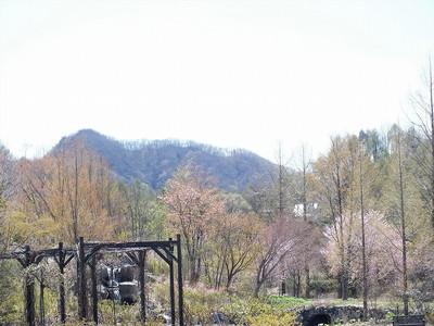 170502karuizawa_lake_garden8