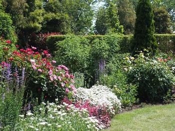 120519kana_garden47