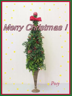 20151203christmas_tree1_mozi