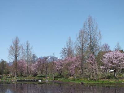 170502karuizawa_lake_garden35