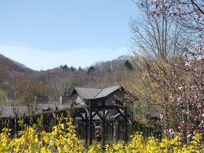 170502karuizawa_lake_garden4rengyou